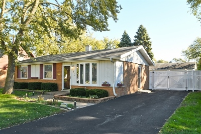Cook County Single Family Home New: 13137 Forestview Lane