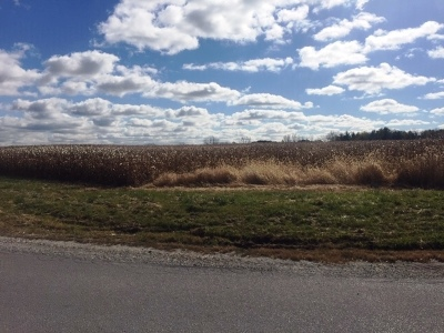 Crete IL Residential Lots & Land For Sale: $490,275
