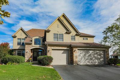 Geneva Single Family Home New: 0n519 Dobson Lane