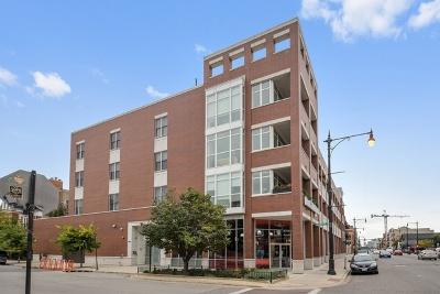 Condo/Townhouse New: 1611 North Hermitage Avenue #401