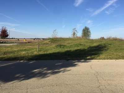 Plainfield Residential Lots & Land For Sale: 12934 Timber Wood Circle