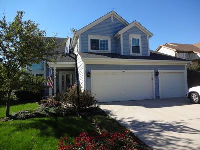 Bartlett Single Family Home New: 1445 Newcastle Lane