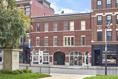 Condo/Townhouse New: 1013 West Webster Avenue #4