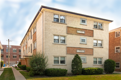 Chicago Condo/Townhouse New: 6771 North Olmsted Avenue #1N