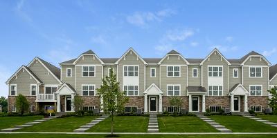 Elgin IL Condo/Townhouse New: $221,990