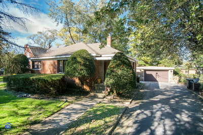 Lansing Single Family Home For Sale: 3250 South Schultz Drive
