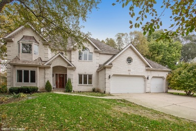 Naperville Single Family Home New: 107 Trappers Court