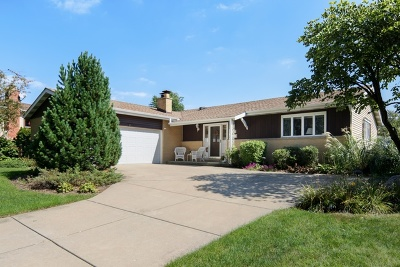 Darien Single Family Home For Sale: 6913 Wilmette Avenue