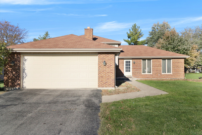 Orland Park Single Family Home New: 9220 137th Street