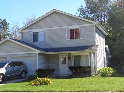 Naperville Condo/Townhouse New: 531 Milton Drive