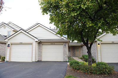 Hoffman Estates Condo/Townhouse New: 993 Butter Creek Court