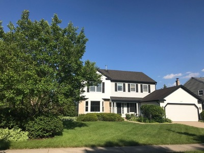 Buffalo Grove Single Family Home For Sale: 317 Lakeview Drive