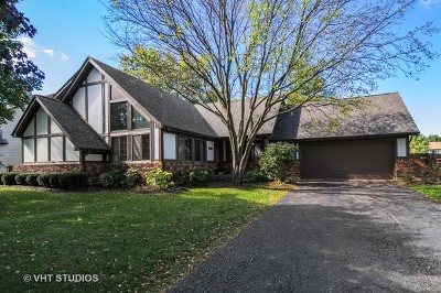 Naperville Single Family Home New: 10s556 Book Road