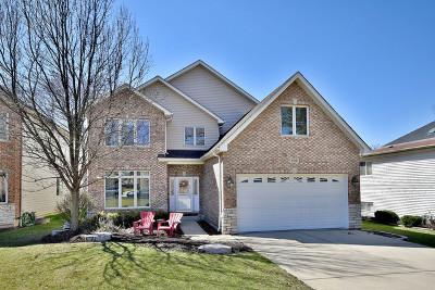 Elmhurst Single Family Home New: 636 West Armitage Avenue