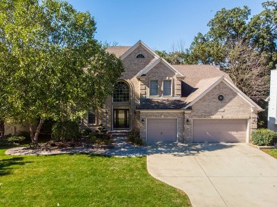 Plainfield Single Family Home For Sale: 16922 Arbor Creek Drive