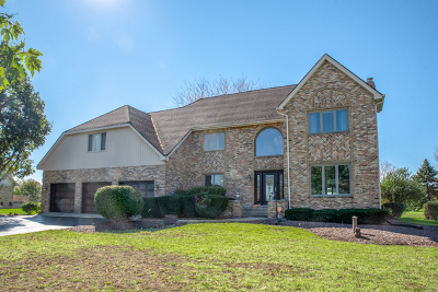 Naperville Single Family Home New: 24161 Brancaster Drive