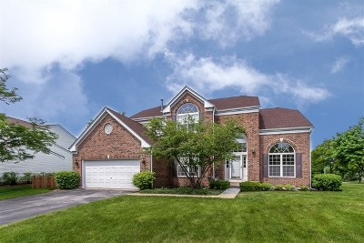 Schaumburg Single Family Home For Sale: 480 Cherry Hill Court