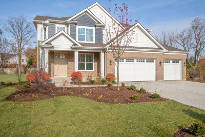 Vernon Hills Single Family Home For Sale: 393 Camargo Court
