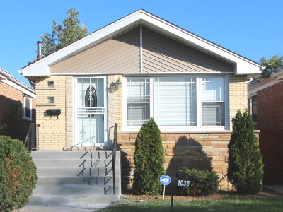 Chicago IL Single Family Home New: $209,000