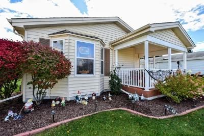 Grayslake Single Family Home New: 619 Filly Lane
