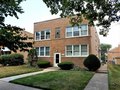 Skokie Multi Family Home New: 9129 La Crosse Avenue