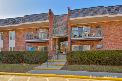 Downers Grove Condo/Townhouse New: 4133 Saratoga Avenue #217