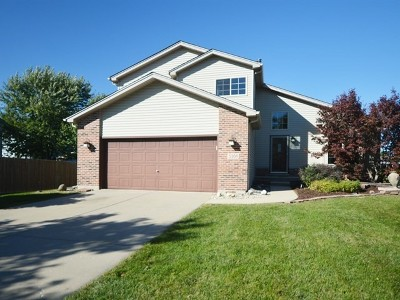 Plainfield Single Family Home New: 5309 Pine Trails Circle