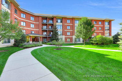 Lombard Condo/Townhouse New: 855 East 22nd Street #317
