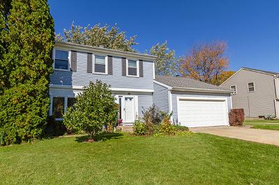 Schaumburg Single Family Home New: 348 North Walnut Lane