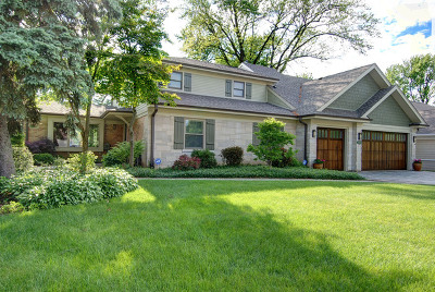 Mount Prospect Single Family Home For Sale: 708 South See Gwun Avenue