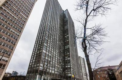 Chicago Condo/Townhouse New: 655 West Irving Park Road #1903