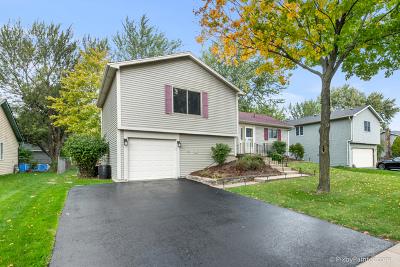 Bolingbrook Single Family Home New: 1128 Partridge Avenue