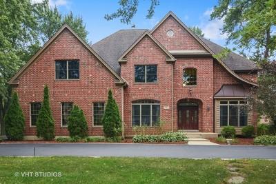 Palatine Single Family Home New: 65 West Aldridge Avenue