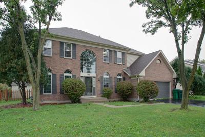 Grayslake Single Family Home New: 351 Cambridge Drive
