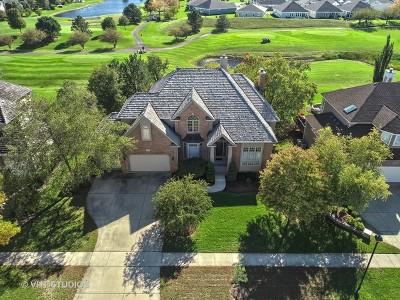 Naperville Single Family Home New: 3412 White Eagle Drive