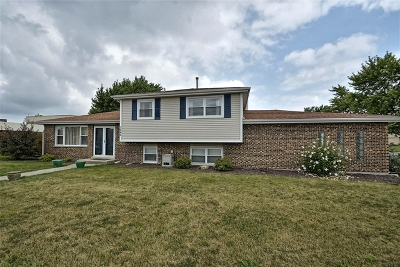 Tinley Park IL Single Family Home New: $249,900