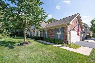 Elgin IL Condo/Townhouse New: $187,500