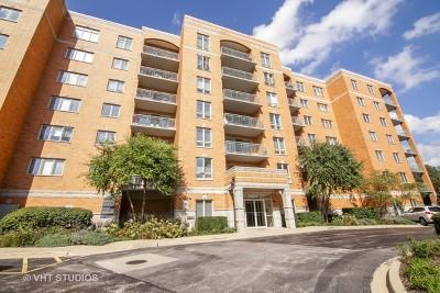 Niles Condo/Townhouse For Sale: 6801 North Milwaukee Avenue #406