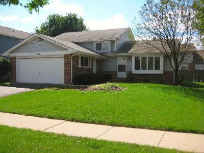 Naperville Single Family Home New: 1602 Hinterlong Lane