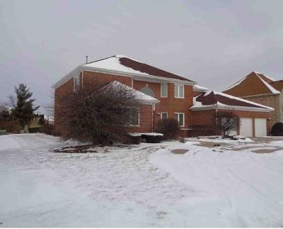 Tinley Park Single Family Home For Sale: 2 Odyssey Drive