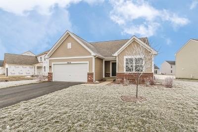 Joliet Single Family Home New: 6606 Colaric Lot# 174 Drive