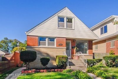 Oak Park Single Family Home For Sale: 1173 South East Avenue