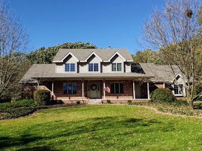 Minooka, Channahon Single Family Home For Sale: 23050 South Althea Court