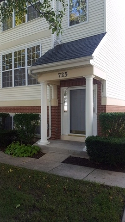 St. Charles Condo/Townhouse New: 725 Pheasant Trail