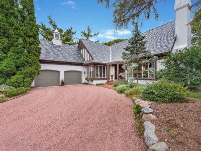 Burr Ridge Single Family Home For Sale: 802 Burr Ridge Club Drive
