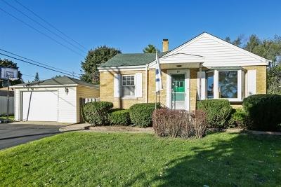 Palatine Single Family Home New: 20 North Ashland Avenue
