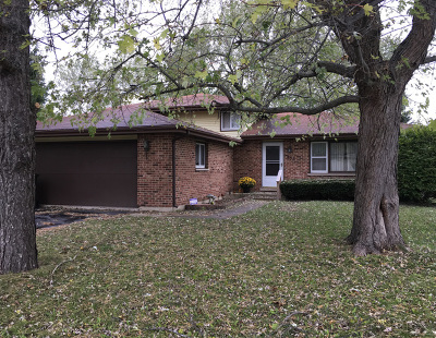 South Elgin Single Family Home New: 856 Sundown Road