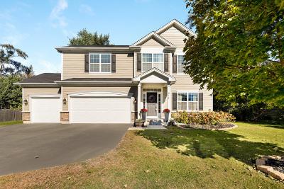 Palatine Single Family Home For Sale: 912 East Glencoe Street