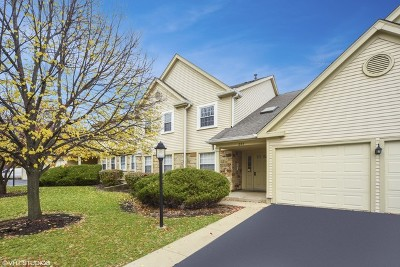 Schaumburg Condo/Townhouse For Sale: 205 Glasgow Lane #V2