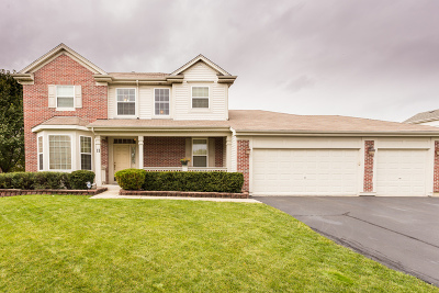Bolingbrook Single Family Home For Sale: 11 Plainview Court